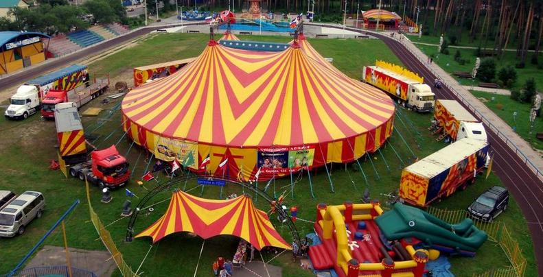 Уряд підтримав законопроект про заборону використання тварин у цирках