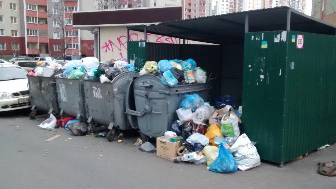 Чи вдасться Україні подолати проблему сміття