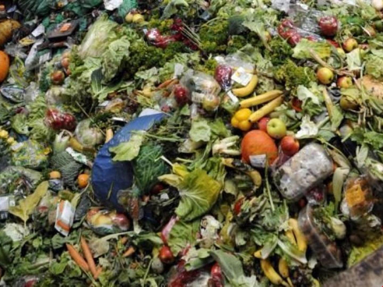 У 200 українських школах встановлять компостери для відходів з їдалень