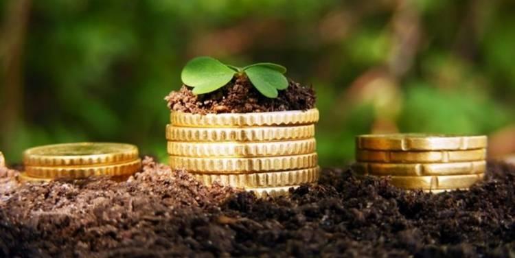 Екологічна, соціальна та управлінська інформація мають великий вплив на прийняття рішень інвесторами – EY