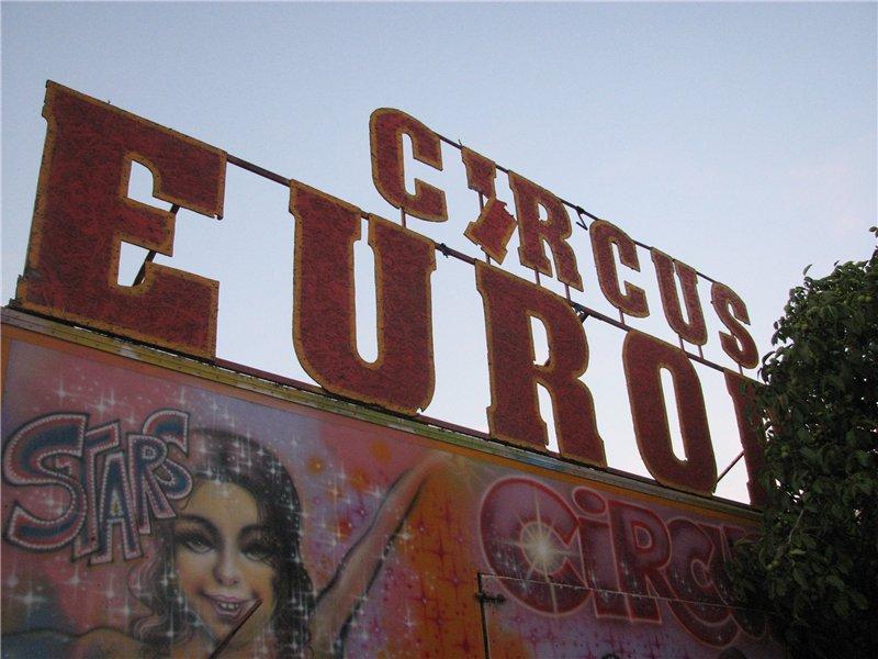 Житомирські екологи оштрафували Будапештський цирк за неналежне поводження з тваринами