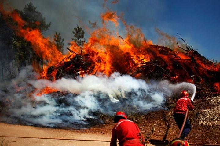 Спека у Європі та глобальна зміна клімату: хто винен?