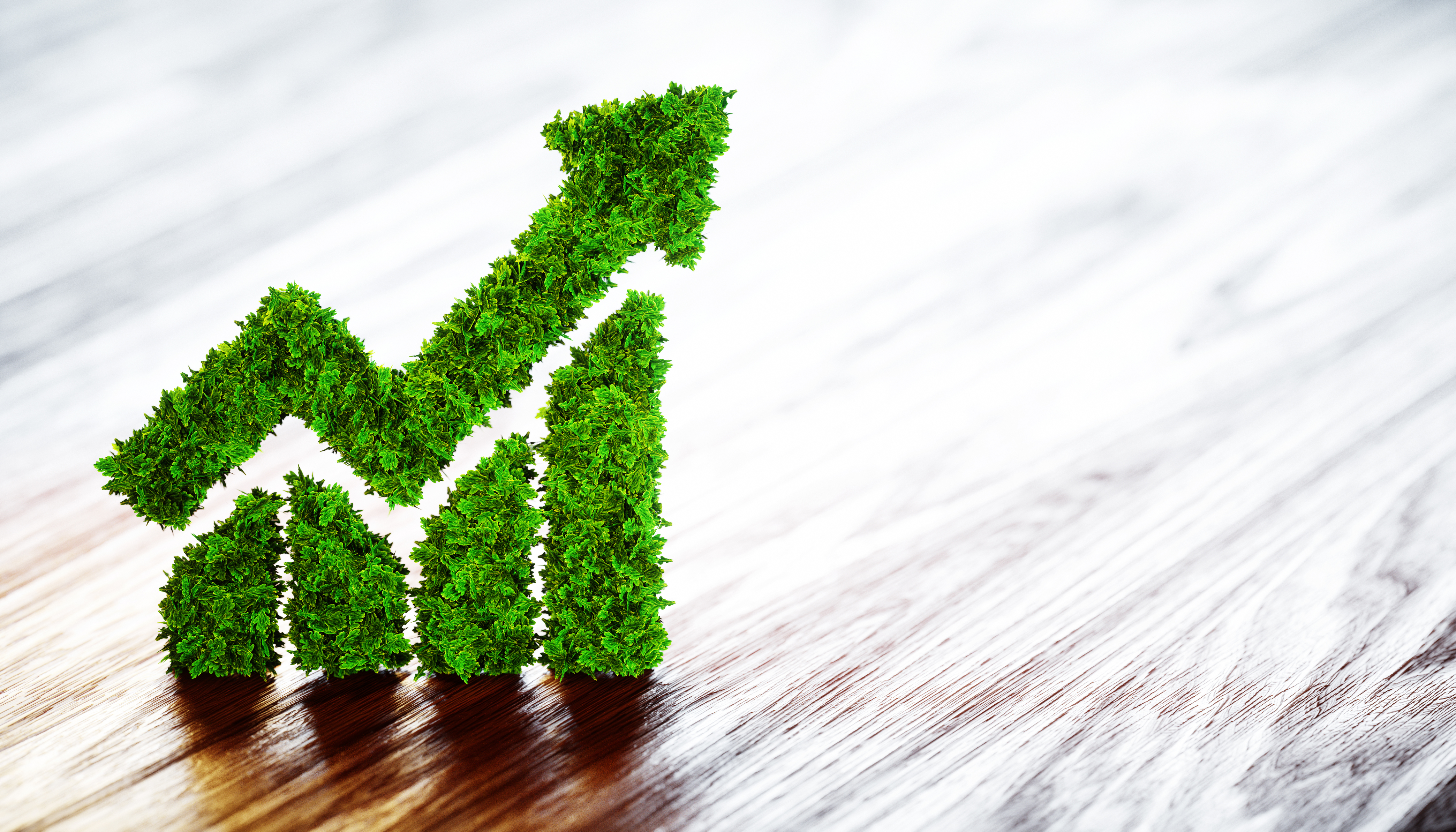 """""""Зелені"""" облігації можуть залучити $73 мільярди інвестицій в Україну"""