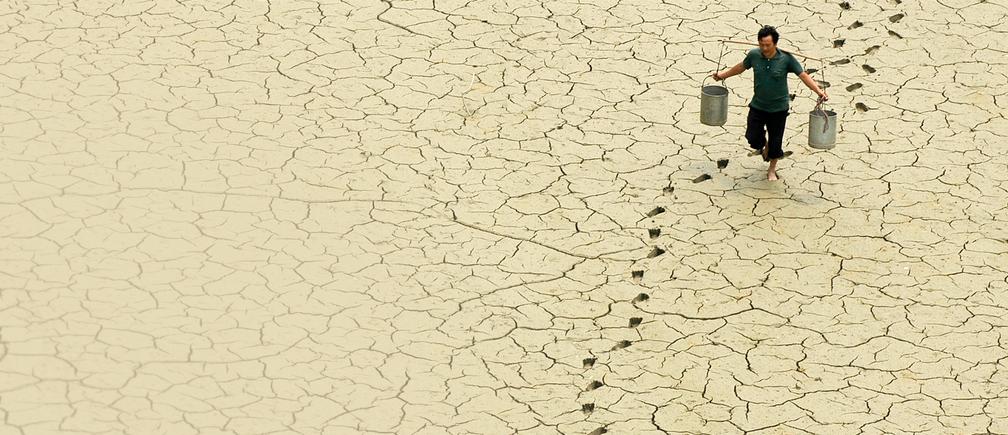 """WEF: Кліматичні та екологічні ризики """"обійшли"""" всі інші за ймовірністю та наслідками у 2020"""